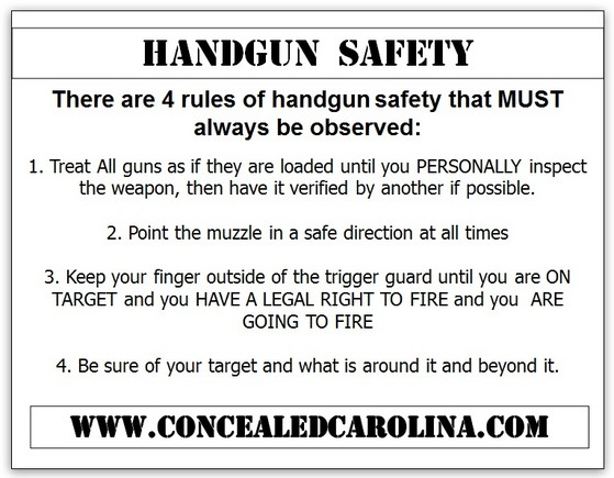 gun safety in the home essay Gun safety in the houseguns are being used household as a form of protection for many years however, are they are safe parents should consider the negative effects.